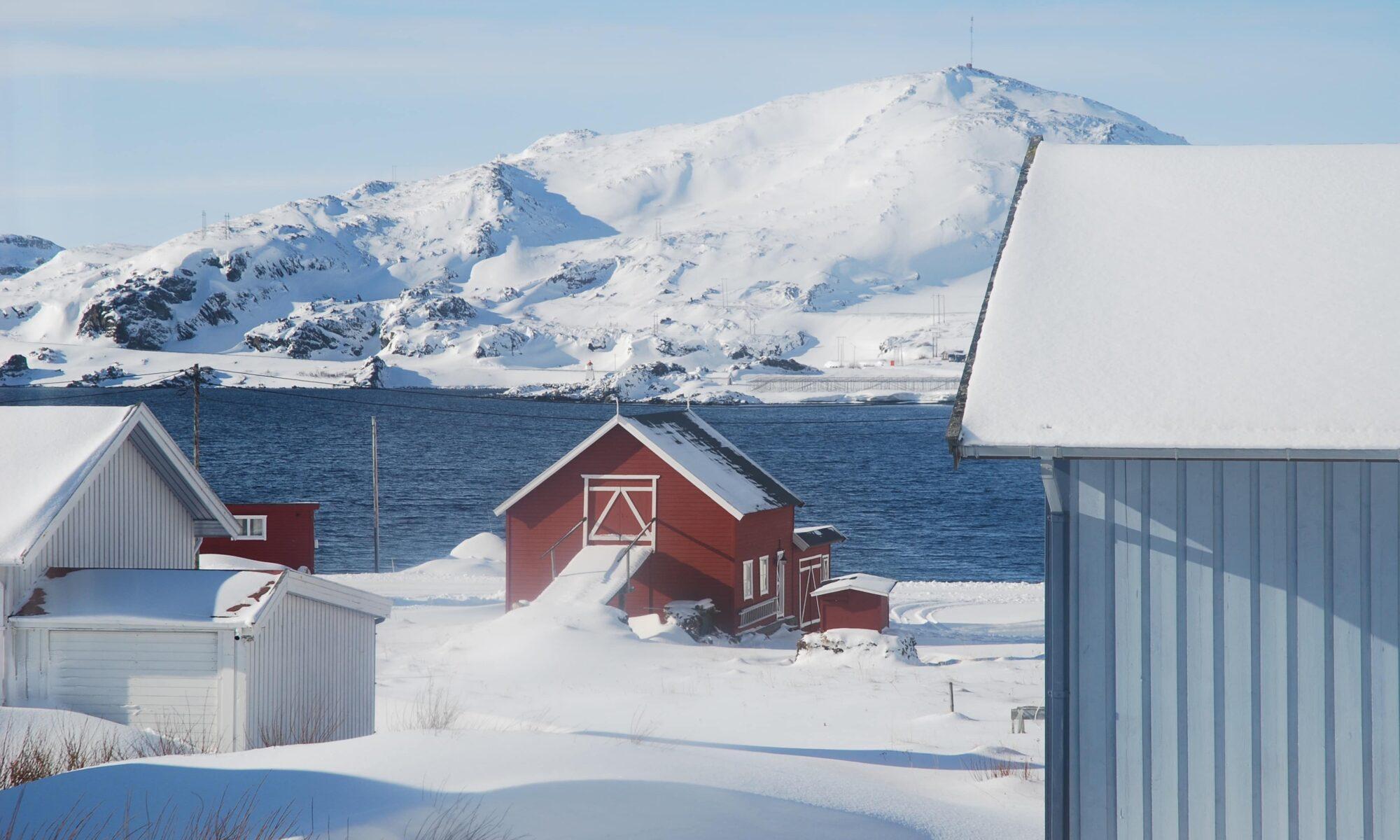 Kongsfjord in winter