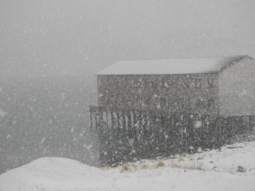 Winter Kongsfjord