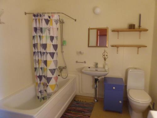 Bathroom - Holiday Home Kongsfjord
